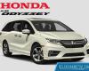 Harga Honda Odyssey Bekas Baru