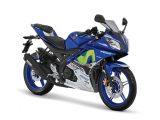 Kelebihan dan Kekurangan Yamaha R15